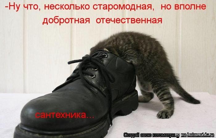 1382543504_106343346_large_kotomatritsa_v (700x448, 192Kb)