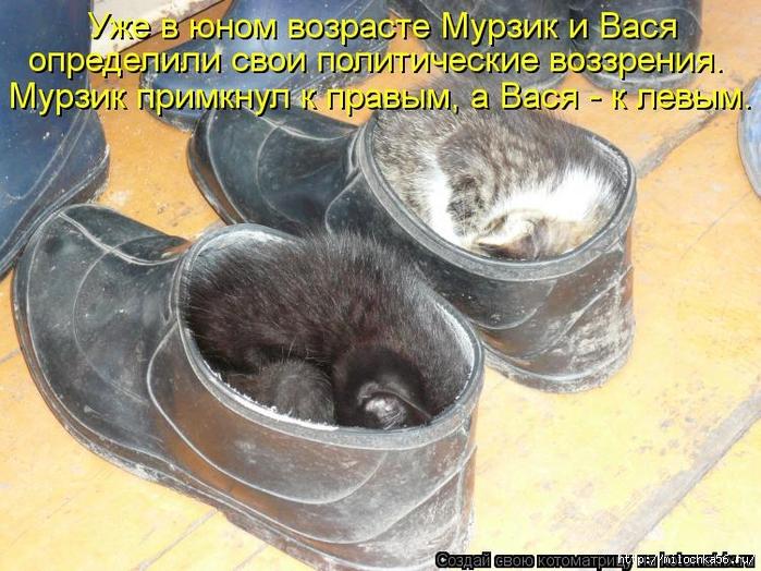 1382543504_kotomatritsa_pj (700x524, 325Kb)