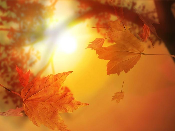 осень, пейзаж 18 (700x525, 271Kb)