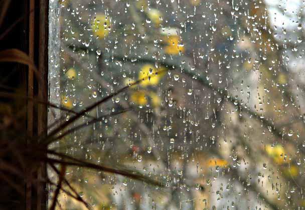 дождь (608x420, 61Kb)