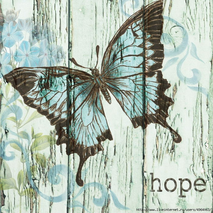 4964063_Barnwood_Butterfly_1_revised (700x700, 498Kb)