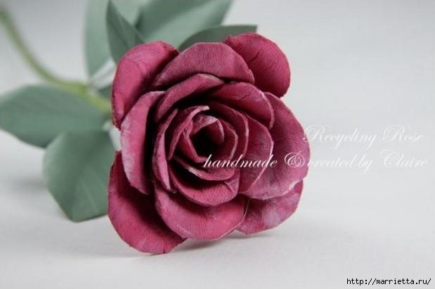 Самые красивые розы из яичных лотков. Мастер-класс (3) (619x411, 99Kb)