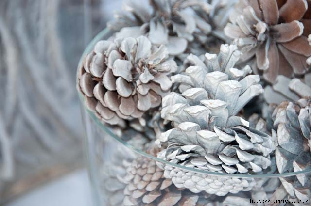 Зимняя классика. Отбеленные сосновые шишки (4) (640x425, 130Kb)