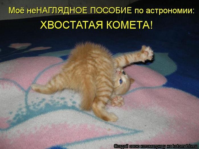 kotomatritsa_C (700x524, 231Kb)