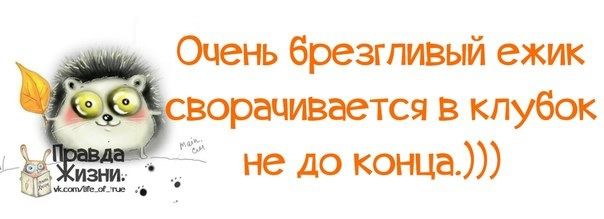 http://img0.liveinternet.ru/images/attach/c/9/106/985/106985354_large_9.jpg