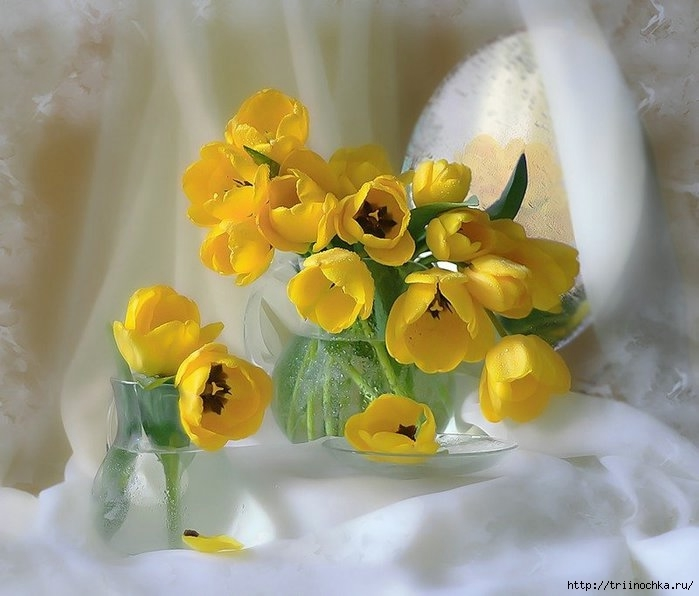 Натюрморты цветы самое интересное в