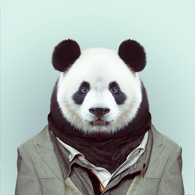 zoo portraits yago partal  (4)