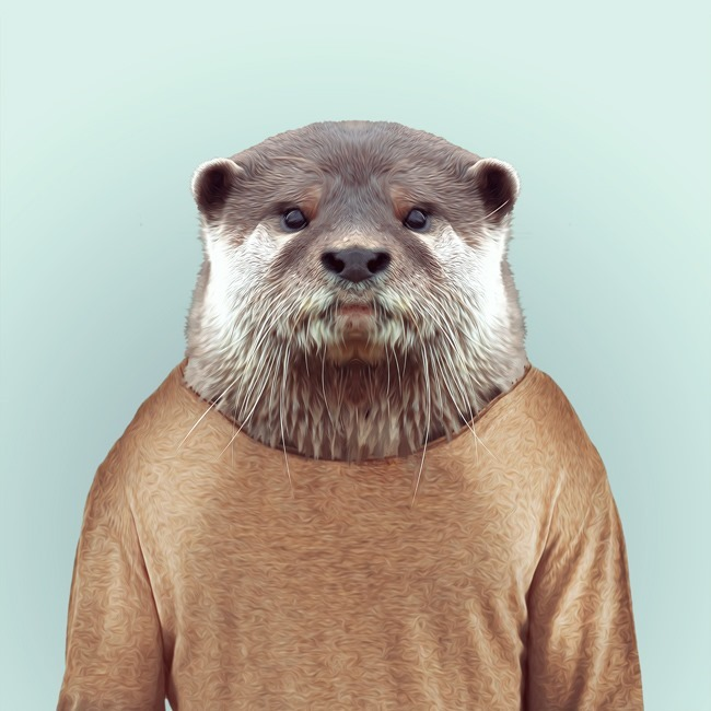 zoo portraits yago partal  (15)