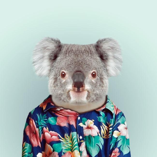 zoo portraits yago partal  (16)