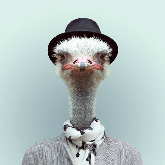 zoo portraits yago partal  (21)
