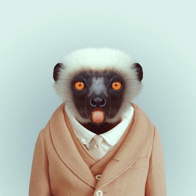 zoo portraits yago partal  (23)