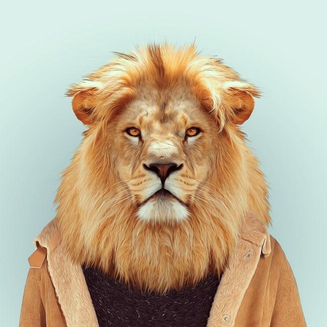 zoo portraits yago partal  (31)