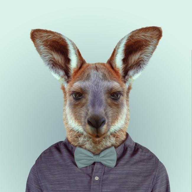zoo portraits yago partal  (33)