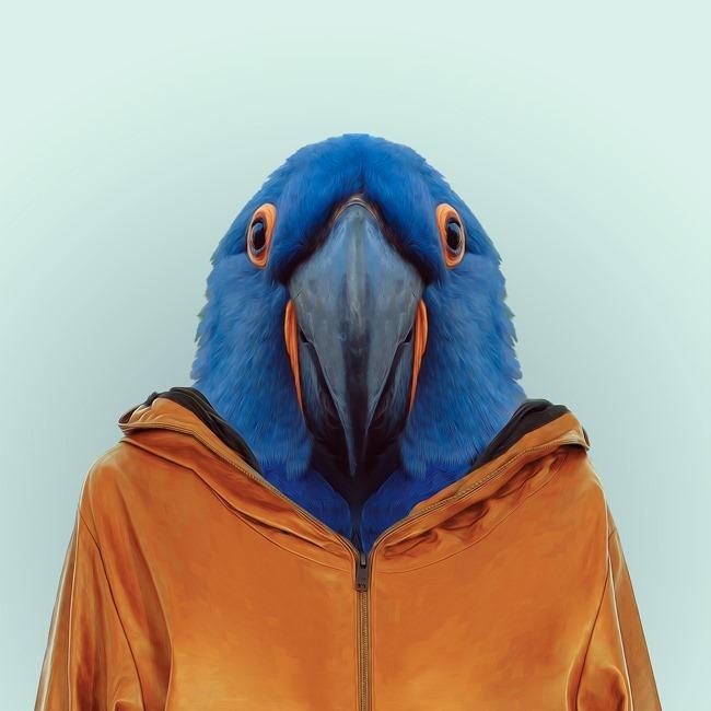 zoo portraits yago partal  (36)