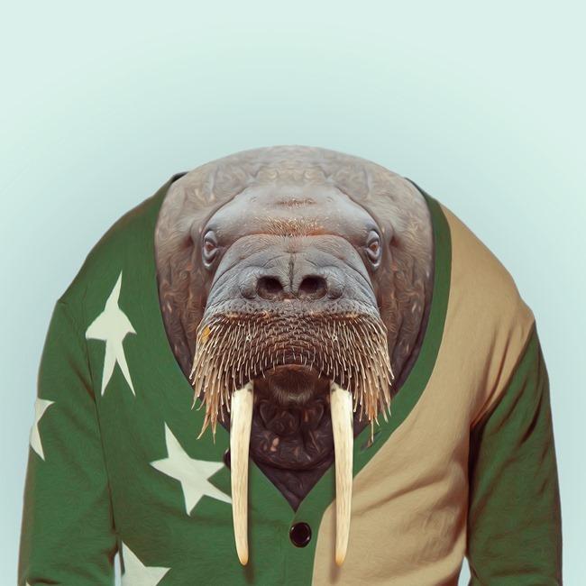 zoo portraits yago partal  (40)