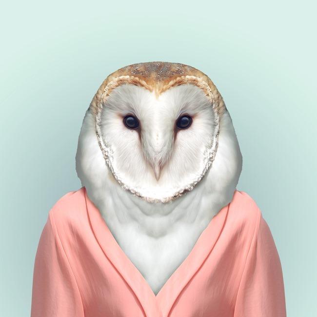 zoo portraits yago partal  (44)