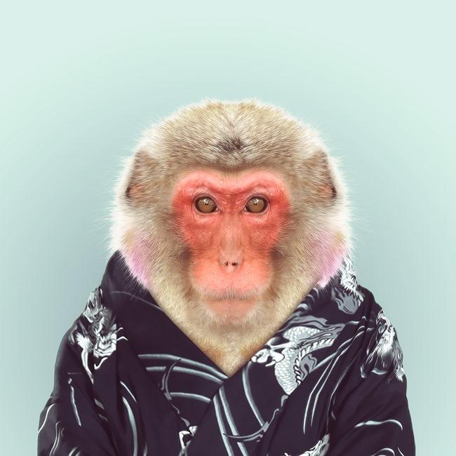 zoo portraits yago partal  (46)