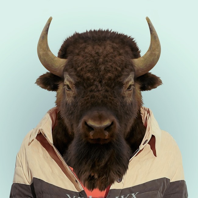 zoo portraits yago partal  (49)