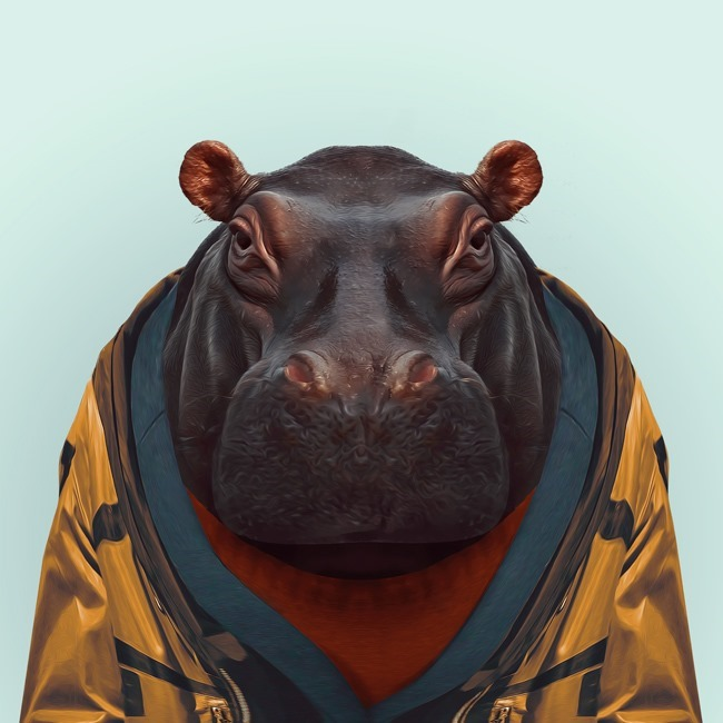zoo portraits yago partal  (50)