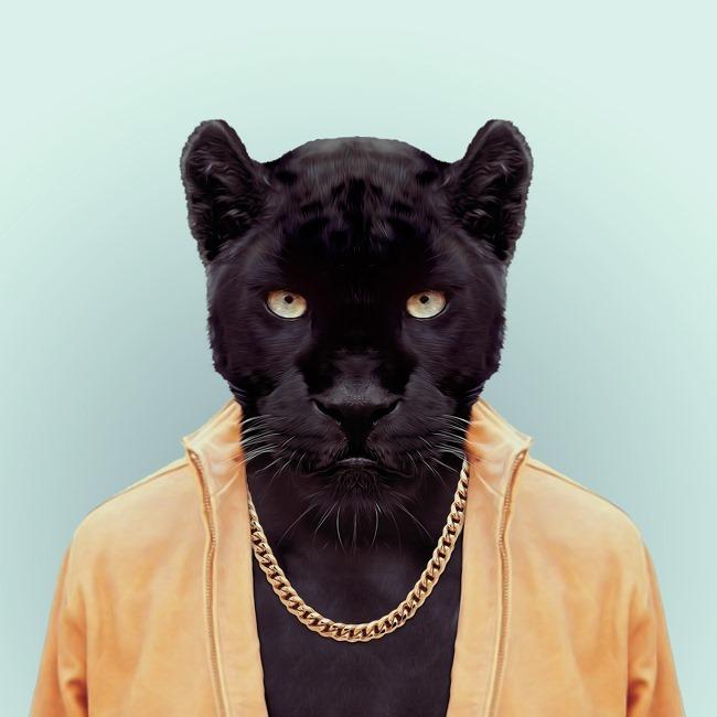 zoo portraits yago partal  (53)
