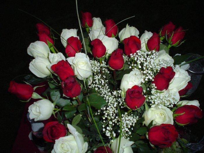 Букет красных и белых роз (700x525, 76Kb)