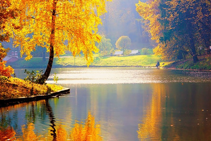 Осень твою