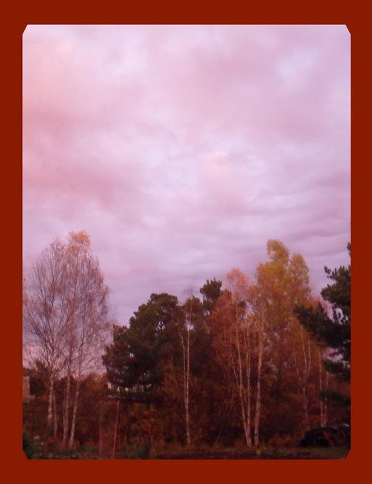 Осенью на даче. Вечерний закат (539x700, 72Kb)