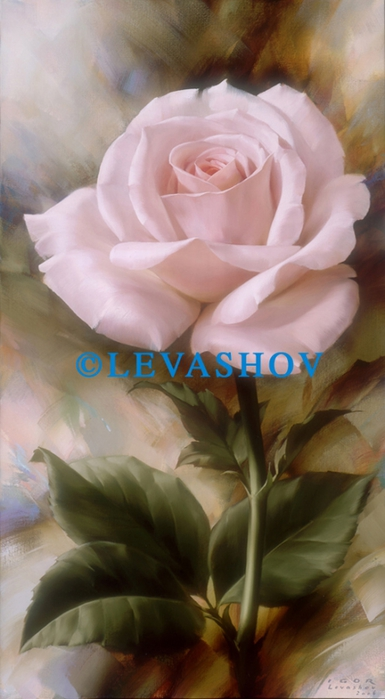 1299356618_single-pale-pink-rose_nevsepic.com.ua (385x700, 171Kb)