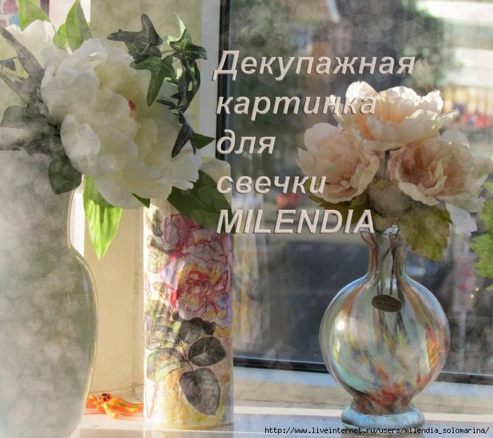 IMG_3936 (700x622, 317Kb)