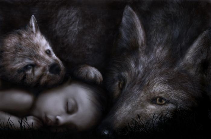 Wolf-Baby (700x462, 184Kb)