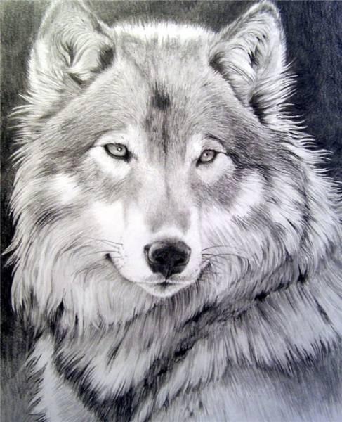 gallery_62_110_49837 (487x600, 54Kb)