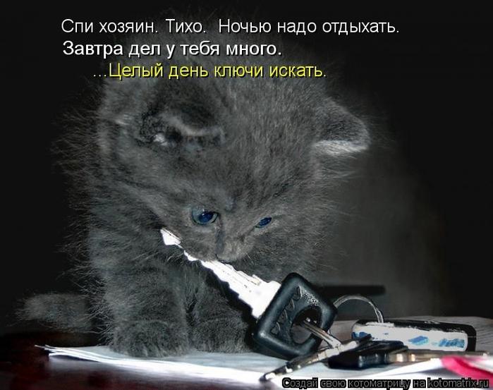 kotomatritsa_fD (700x553, 206Kb)