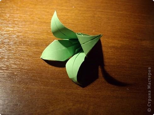 кусудама розочка (13) (490x368, 113Kb)