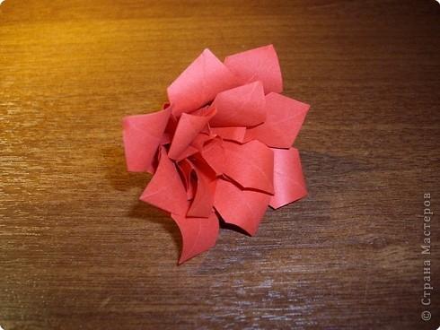 кусудама розочка (17) (490x368, 115Kb)