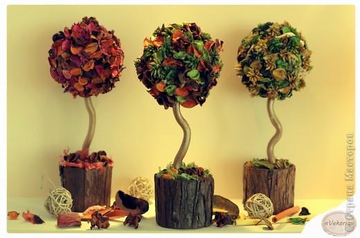 Поделки из сухоцветов своими руками