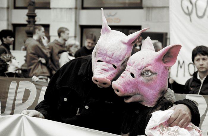 Вегетарианство: самые глупые заблуждения