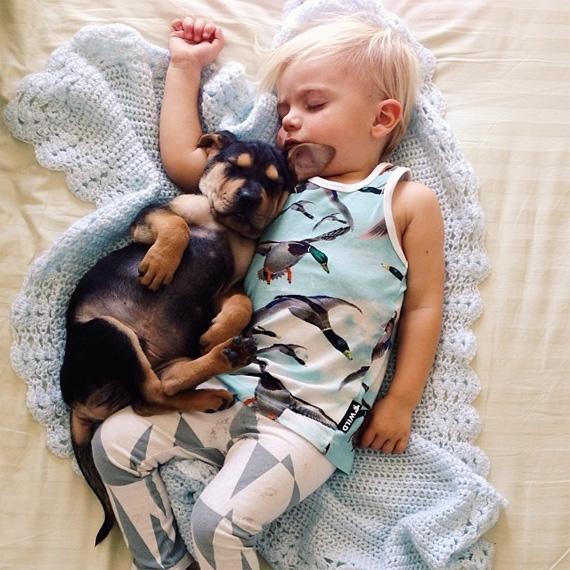 смешные фото детей и животных (570x570, 254Kb)