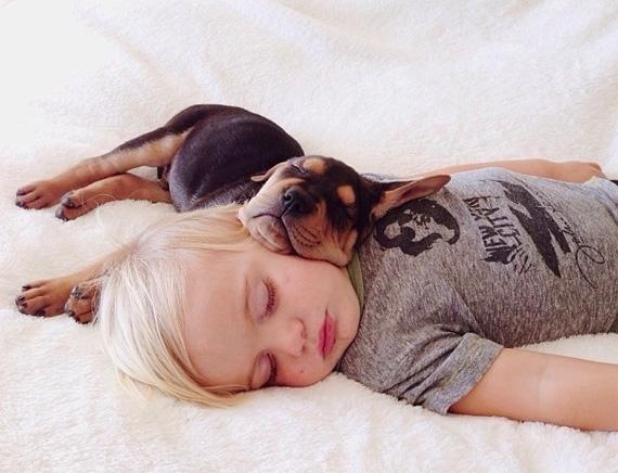 смешные фото детей и животных 4 (570x436, 170Kb)