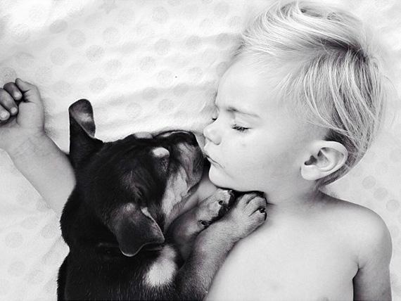 смешные фото детей и животных 12 (570x428, 141Kb)