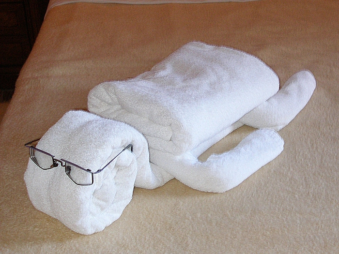 фигурки из полотенца4 (700x525, 300Kb)