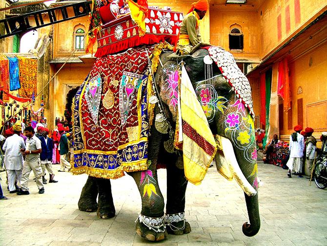парад слонов джайпур 15 (670x503, 596Kb)