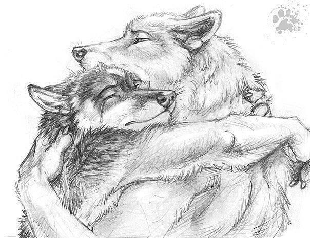 волк (604x465, 61Kb)