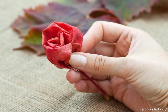 Осенний букет из виноградных листьев (6) (700x466, 219Kb)