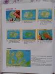 Превью Гавайский квилт 4. Японская книжка с красивыми моделями лоскутного шитья (43) (525x700, 231Kb)
