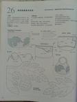 Превью Гавайский квилт 4. Японская книжка с красивыми моделями лоскутного шитья (74) (525x700, 215Kb)