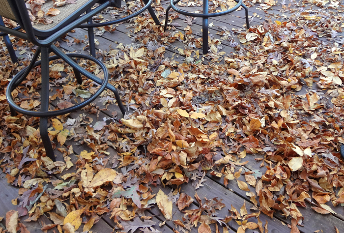 Leaves-on-my-porch (700x474, 577Kb)