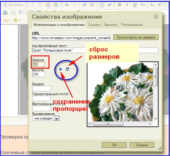 2013-11-24_120326 (564x518, 147Kb)