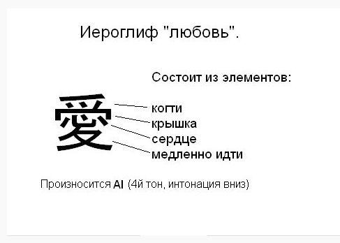 что означает виктор по японски термобелье для ребенка