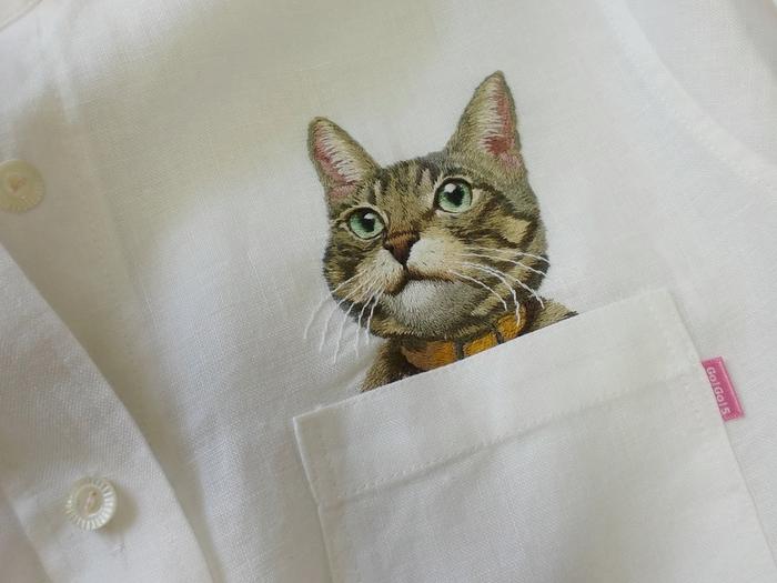 Котики на рубашках