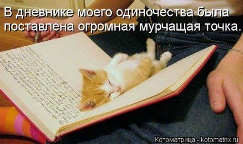 1350051306_kotomatrix-121012-21 (500x296, 144Kb)